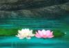 Duhovna smernica - duhovni nasveti - astrološka znamenja
