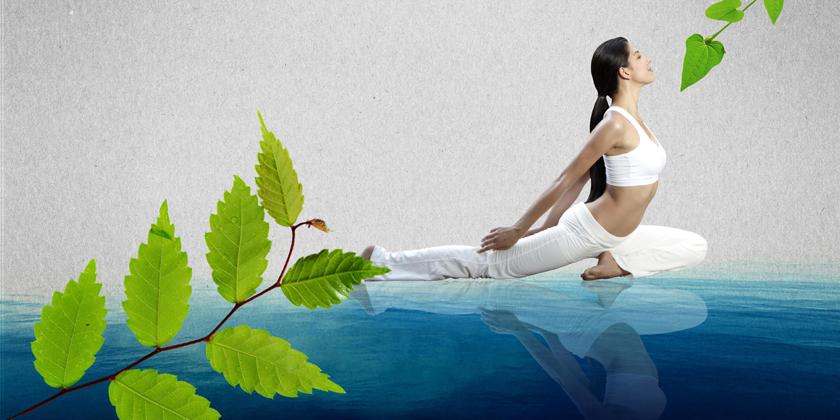 Če vseh pet elementov deluje harmonično, je rast bujna in so sadovi obilni.