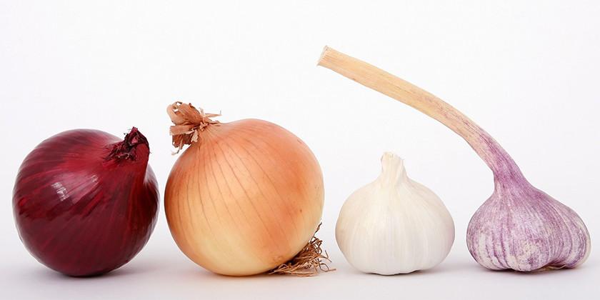 Zdravilni učinki živil