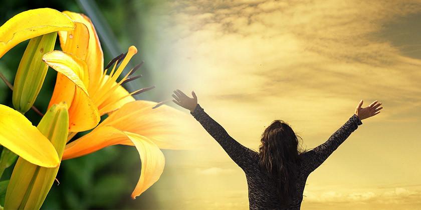 Obdobje Sonca v znamenju leva prinaša toplino in pogum