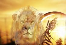 Merkur v znamenju leva bo v avgustu poudaril vašo iskrenost. Preverite njegov vpliv!