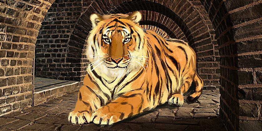 Tiger, kitajsko znamenje, ki simbolizira drznost in strast
