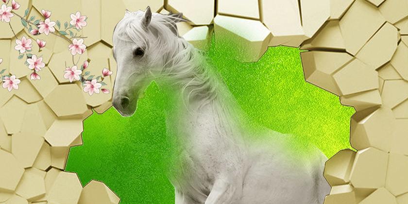Znamenje konj, najbolj radodarno znamenje v kitajski astrologiji