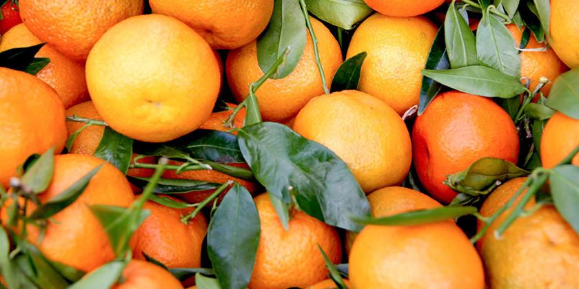 Oranžna barva: kakšen je tip vaše osebnosti, če ste rojeni v znamenju dvojčka, vodnarja ali device?