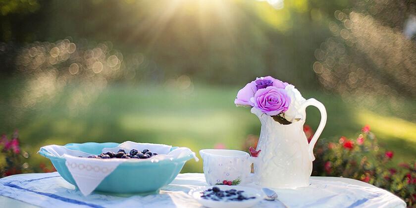 Borovnice so živilo, ki imajo posebno moč in ugodno vplivajo na zdravje ter možgane