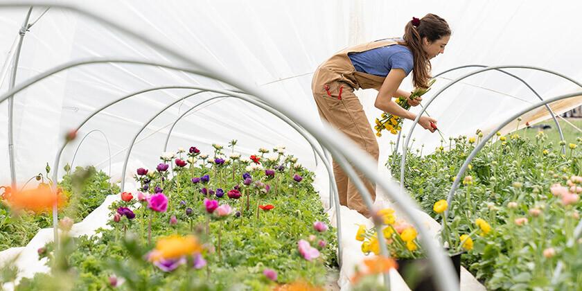Astrološka znamenja, ki nadvse uživajo v vrtnarjenju: Je med njimi tudi vaše?