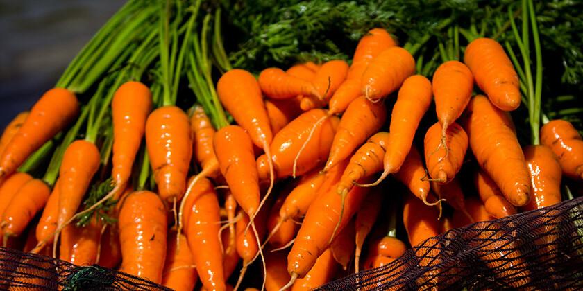 Zelenjava je vir dobrega počutja. Katera pa je najbolj zdrava?